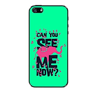 Vibhar printed case back cover for Apple iPhone 5c SeeMeNow
