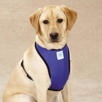 Guardian Gear Cool Pup Dog Cooling Harness, Small