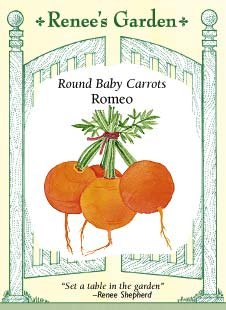 Carrot Seeds - Round Baby Carrots - Romeo