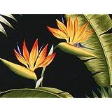 Tropical Hawaiian Fabric - Bark Kahala Black Birds of Paradise
