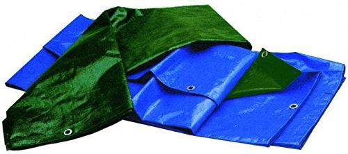 Vigor-Blinky 79850-75 Teloni Antistrappo Pesanti, 15x20 m, Blu/Verde