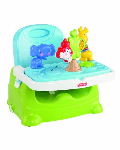 Mattel-Fisher-Price-Baby-Gear-x6835-Kindersitz-halten-Entdeckungen