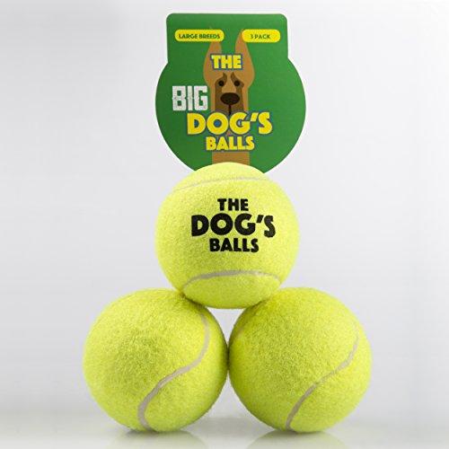 Large Dog Toys Balls : The dog s balls large yellow tennis premium