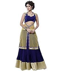 Lovely Blue and Golden Colour Net Lehenga Choli