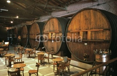 Wallmonkeys Peel and Stick Wall Decals - A Wine Tasting Room with Huge Barrels in Mendoza - 36