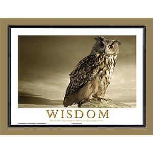 Framed Inspirational  on Amazon Com  Wisdom Motivational Framed Poster  Inspirational Art Print