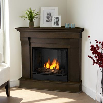 Chateau Corner Gel Fuel Fireplace Finish: Dark Walnut photo