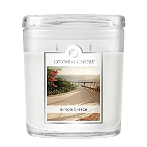Colonial Candle 8-Ounce Scented Oval Jar Candle, Southern Magnolia