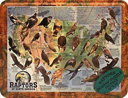 Raptors of North America Puzzle Tin