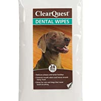 ClearQuest Dental Wipes, 100-Pack