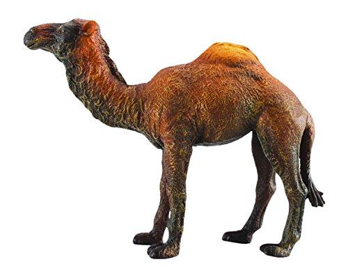 CollectA CollectA Dromedary Camel