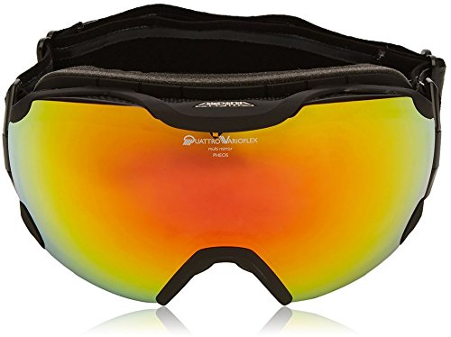 ALPINA Pheos QV MM Skibrille/Snowboardbrille, Modell 2016/17