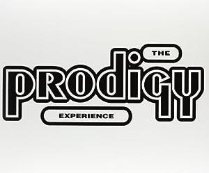 Experience [Vinyl LP]
