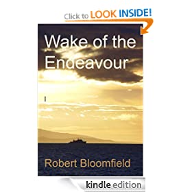 Wake of the Endeavour