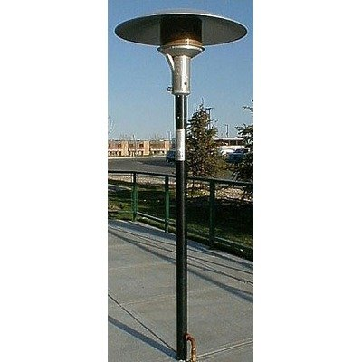 Permanent Natural Gas Patio Heater Finish: Black