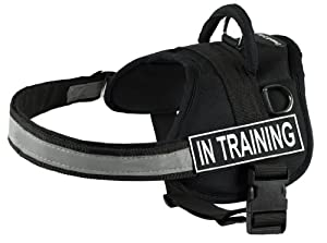 DT Works Harness, In Training, Black/White, Large - Fits Girth Size: 34-Inch to 47-Inch
