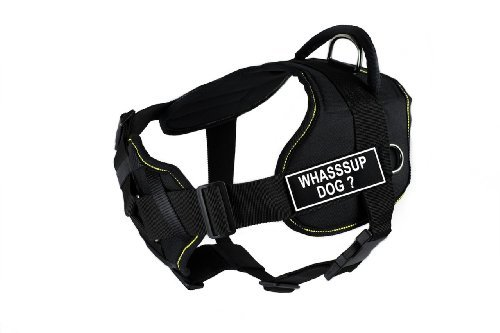 dean-tyler-32-to-107cm-whassup-dog-fun-harness-with-padded-chest-piece-large-black-with-yellow-trim