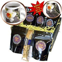 PS Flowers - Pretty Daffodil - White Flowers - Spring Photography - Coffee Gift Baskets - Coffee Gift Basket