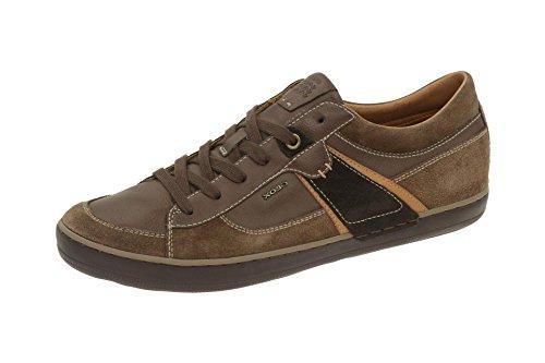 Geox, Sneaker uomo, Marrone (Cigar), 42