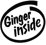 Best Bumper Stickers - Ginger Inside Funny Bumper Sticker Car Van Bike Review
