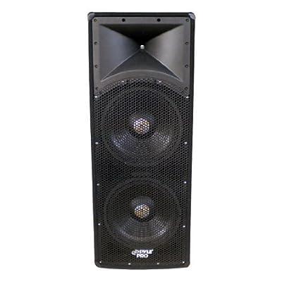 Pyle-Pro PADH124 1200 Watt Dual 12'' 3 Way PA Speaker Cabinet