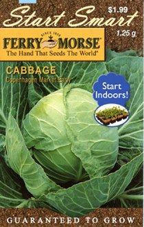 Ferry-Morse 2032 Cabbage Seeds, Copenhagen Market (1.25 Gram Packet)