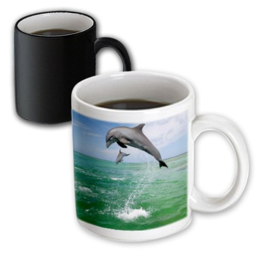 Mug_180615_3 Florene - Fish - Image Of High Jumping Florida Dolphins - Mugs - 11Oz Magic Transforming Mug