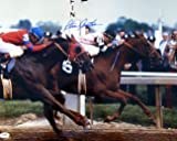 41Uo5RU8qGL. SL160  sports  Ill Have Another wins 2012 Preakness in Photo Finish | Video Replay | Can He Win Triple Crown?