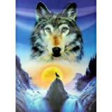 Lrg High Def 3D Pic - Wolf in Mountains. Print on HD 3D Sheets (hard). Size: 30cm x 40cm. A perfect gift - great for Birthdays, Christmas......