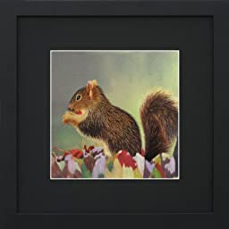 Susho, King Silk Art 100% Handmade Silk Embroidery - Portrait of a Squirrel - Black Mat Framed Medium Size 34117BF