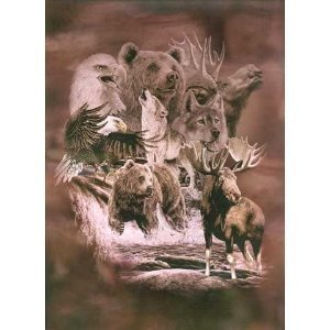 Alaska Favorites Queen Korean Mink Blanket front-839146