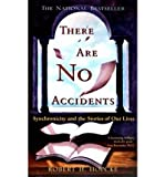 There Are No Accidents (0330367749) by Hopcke, Robert H.