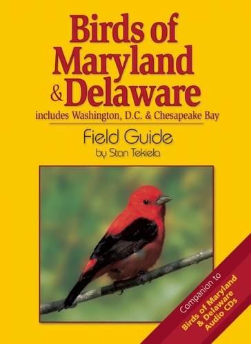 Birds of Maryland & Delaware Field Guide (Bird Identification Guides)