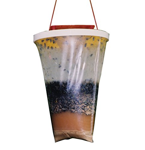 flies-be-gone-non-toxic-fly-trap