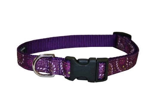 Pretty Paisley Dog Collar - Medium, 3/4