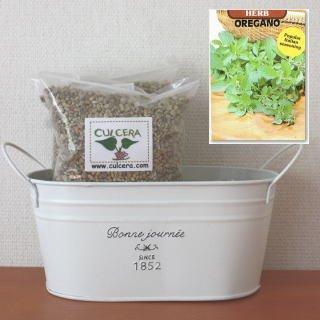 オレガノの栽培セット/標準セット(液体肥料なし)プランターホワイト仕様