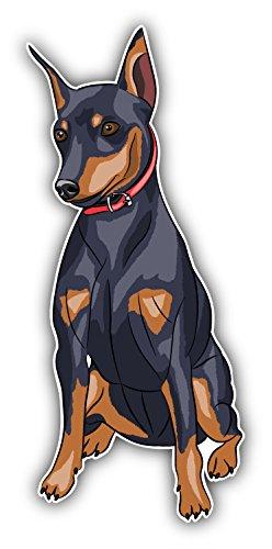 miniature-pinscher-breed-dog-auto-dekor-vinylaufkleber-8-x-12-cm
