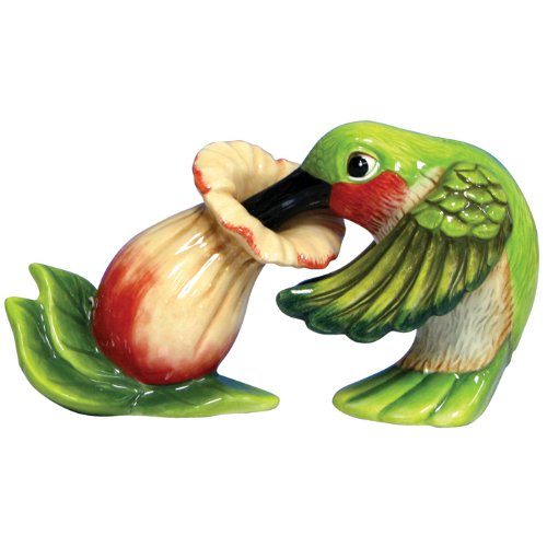 Westland Giftware Mwah Magnetic Hummingbird and Flower Salt and Pepper Shaker Set, 2-3/4-Inch