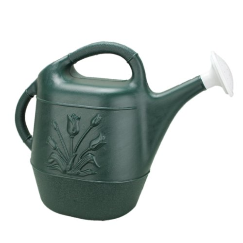 amazon watering can