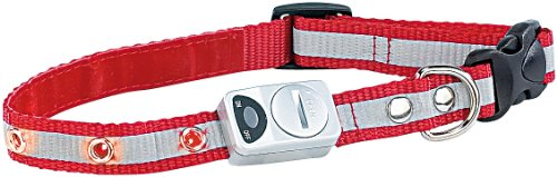 Bild: infactory Sicherheitshalsband mit 6 LEDs  Reflektor für kleine Hunde