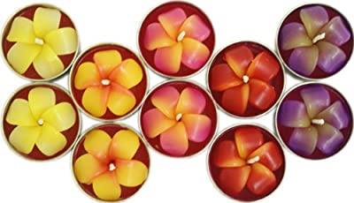 Pack Of 10 Frangipani Flower Tealights Candles
