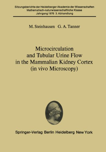 Microcirculation And Tubular Urine Flow In The Mammalian Kidney Cortex (In Vivo Microscopy): Submitted To The Academy Session Of April 24, 1976 (Sitzungsberichte ... Wissenschaften / Sitzungsber.Heidelberg 76)