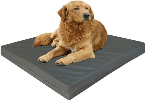 Extra Large Therapeutic Waterproof Memory Foam