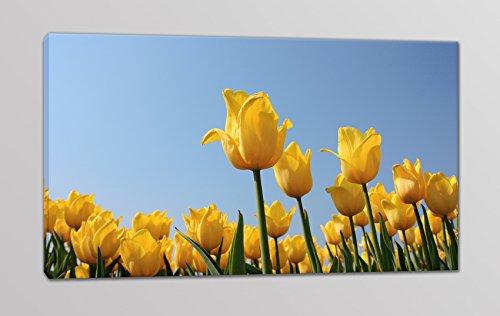 quadri-moderni-stampa-su-tela-tulipani-quadro-prato-di-tulipani-per-arredamento-moderno-quadro-flore