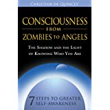 Consciousness From Zombies To Angelsby Quincey Christian De