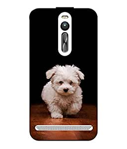 Snazzy Dog Printed Multicolor Hard Back Cover For Asus Zenfone 2