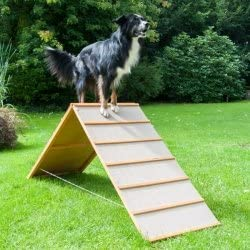 Dog Agility A-Wand