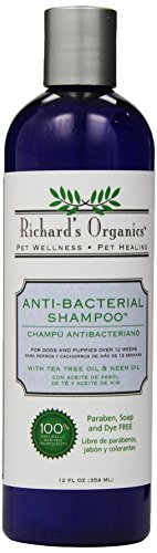 SynergyLabs Richard's Organics Anti-Bacterial Shampoo with Tea Tree Oil and Neem Oil, 12 fl. oz.