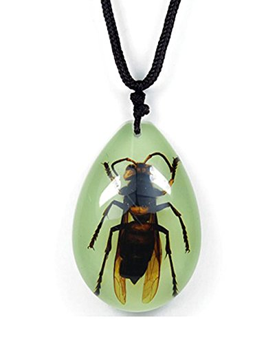 glow-in-the-dark-lucite-teardrop-necklace-w-genuine-giant-wasp-hornet