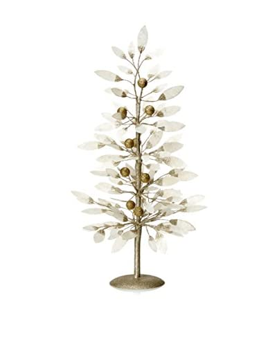 Capiz Medium Leaf Tree